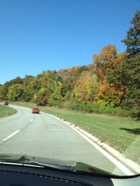 The stunning upstate scenery from the car.